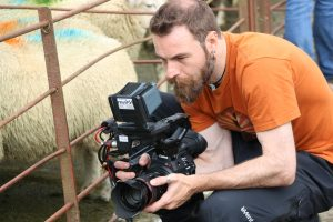 Cameraman/editor Craig Morris shooting sheep on location