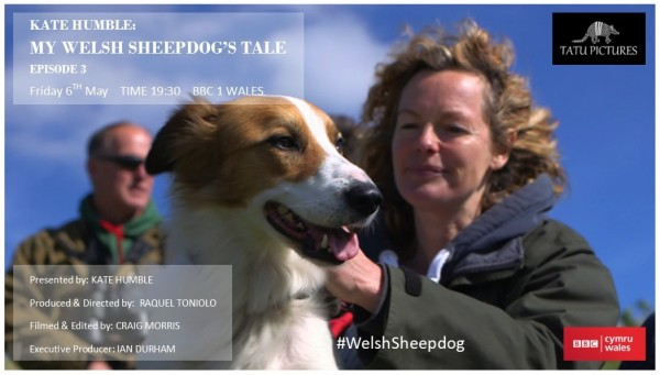 Transmission card for episode 3, Kate Humble: My welsh Sheepdogs Tale